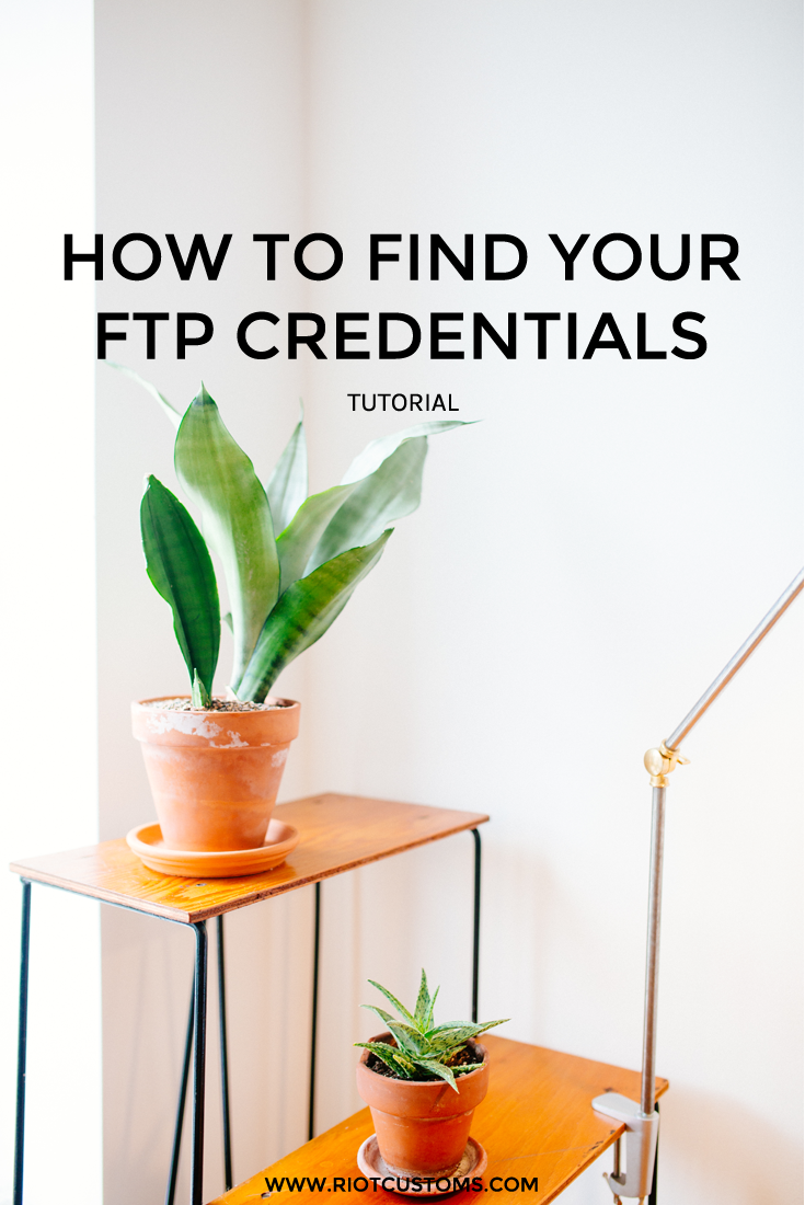 find ftp