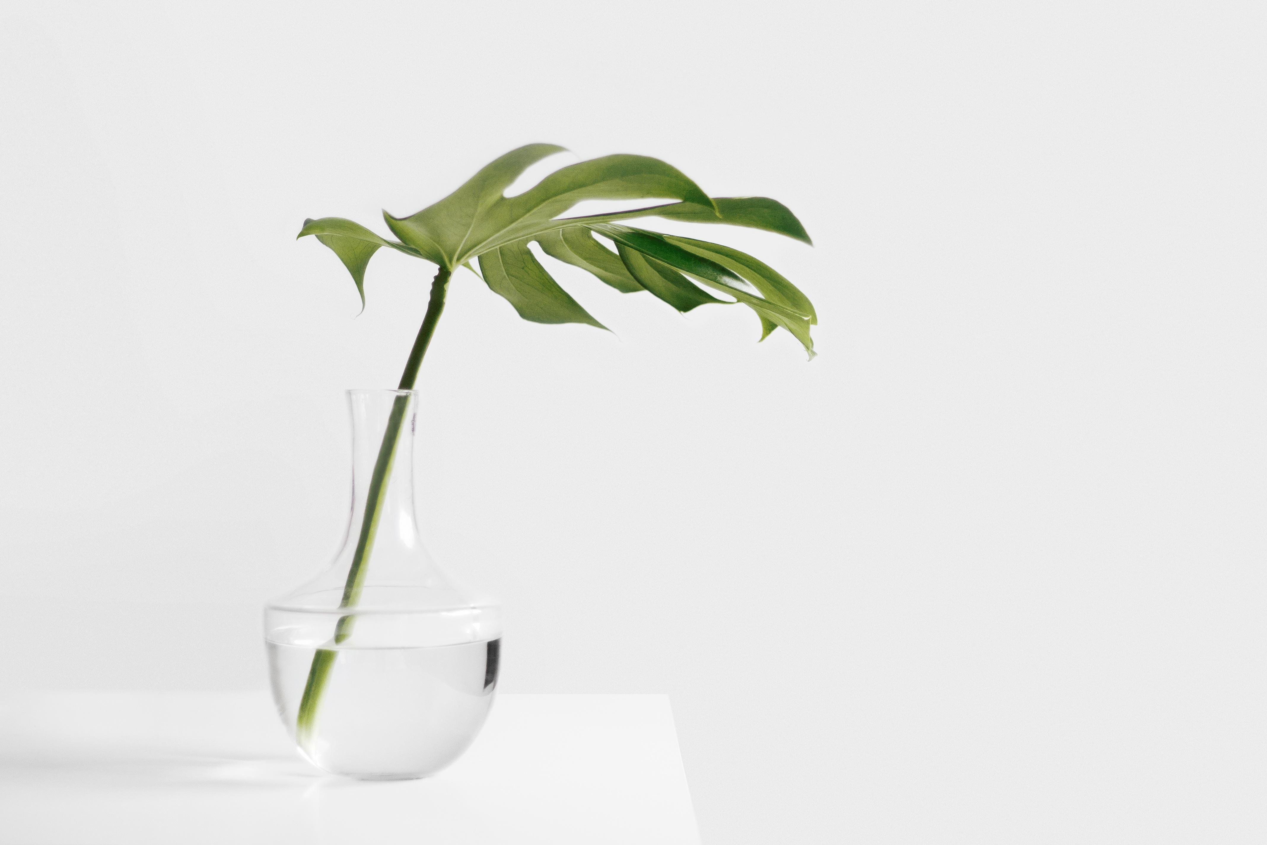 minimalist vase 2